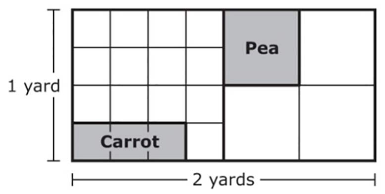 a drawing (diagram, model) of the garden Joshua planted